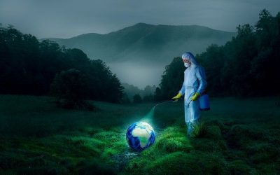 Transición ecológica hacia una sociedad biocentrada
